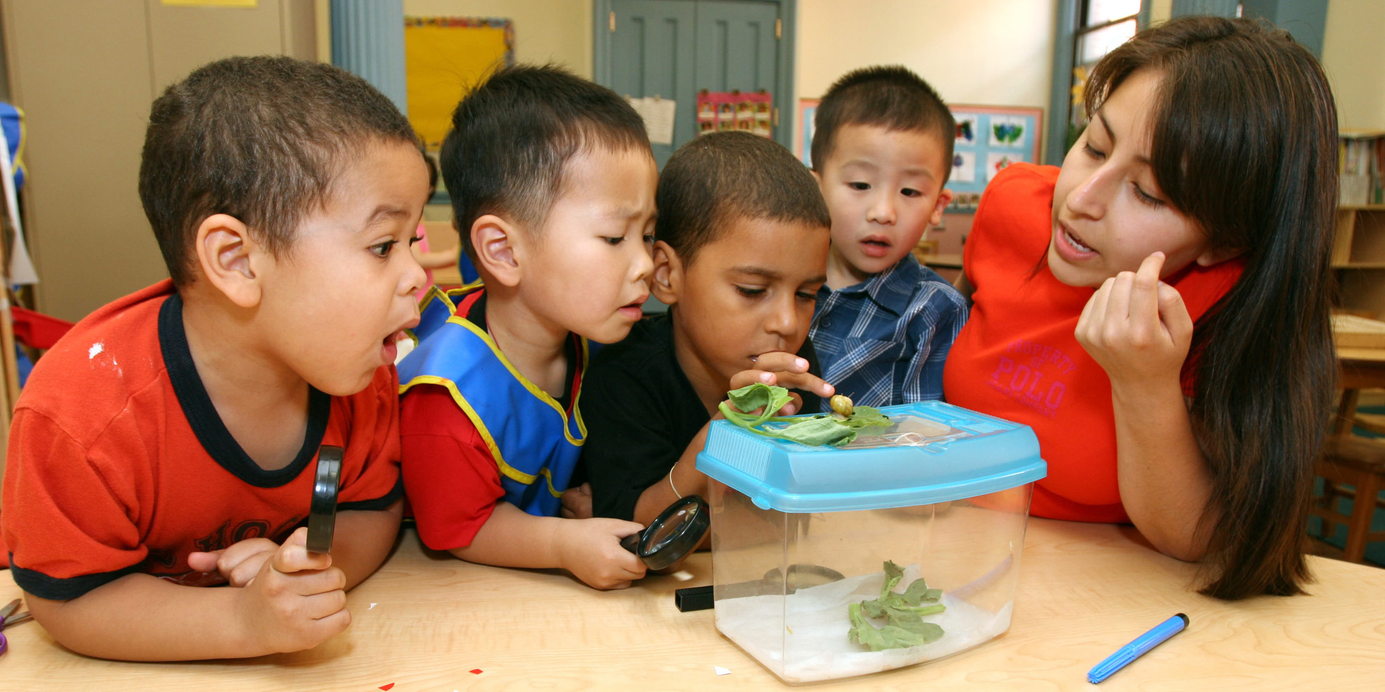 the kindergarten teacher View salary range, bonus & benefits information for teacher kindergarten jobs in the united states or search by specific us and canadian cities and towns view open positions, job descriptions and other statistics related to teacher kindergarten jobs.