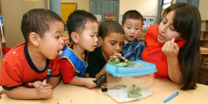 Children examine a snail with teacher in New York City day care center.